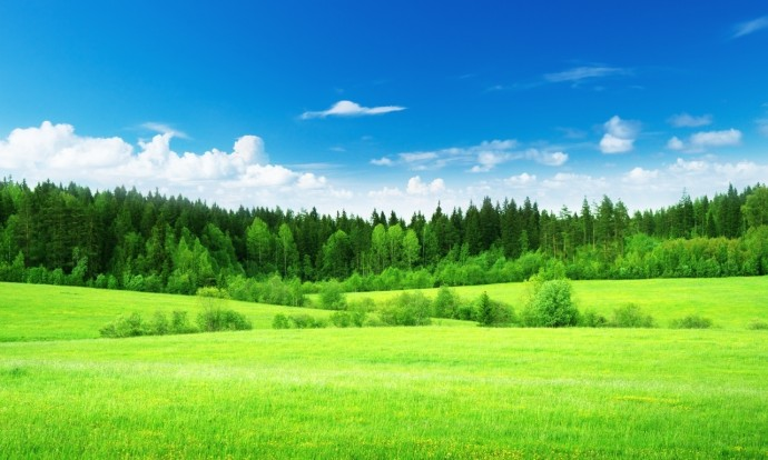 Фоны для сайтов с природой